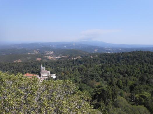 Forêt de Buçaco (17)