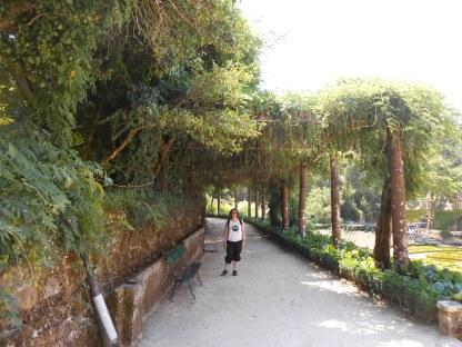Forêt de Buçaco (36)